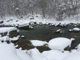 2月5日 昼の蒲田川